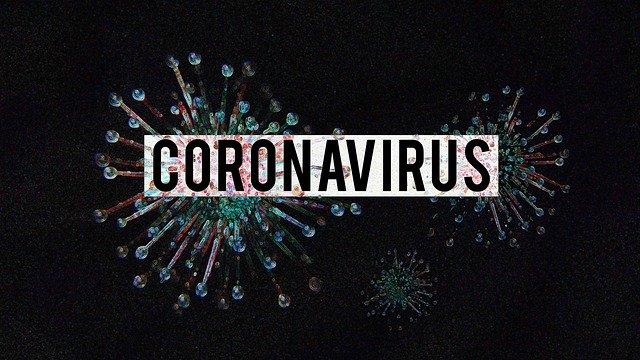 Coronabonds als Lösung | Foto:(c) olgalionart /pixabay.com